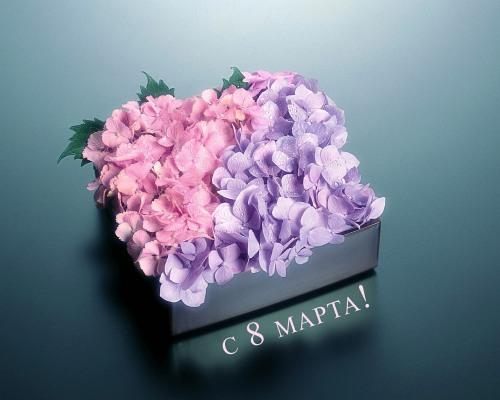 Бесплатная доставка цветов Комсомольск